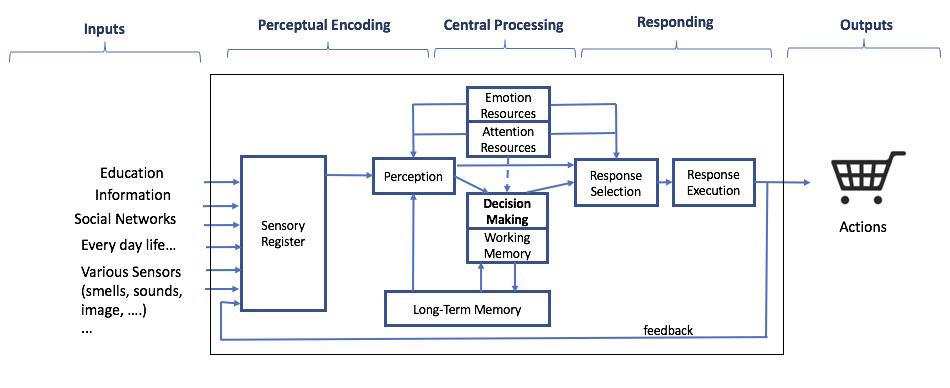 Fig. 2. A Generic Model of Information Processing, « An Introduction to Human Factor Engineering »