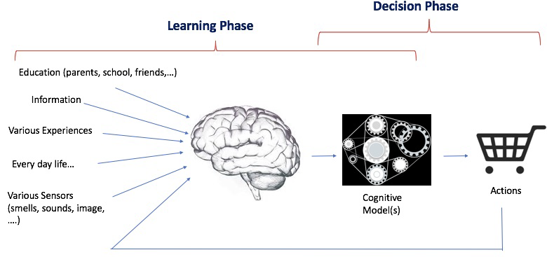 Fig. 1. A simplistic Model of Human learning and decision making