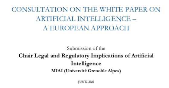 17 Key Takeaways From Our Response to the EU White Paper on AI